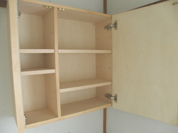 wallcabinet-open.jpg